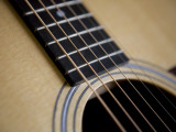 Close View of a Guitar  Annapolis  Maryland  United States
