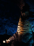 Massive Limestone Column Called the Rock of Ages  Carlsbad Caverns National Park  New Mexico