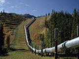 Trans-Alaska Pipeline Passing over Squirrel Creek  Chugach Range  Alaska