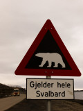 Polar Bear Crossing Sign in Svalbard  Norway  Svalbard  Norway