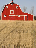 Wheat Fields and a Red Barn  Saskatchewan  Canada