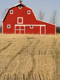 Wheat Fields and a Red Barn  Saskatchewan  Canada