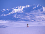 Cross-Country Skier in an Arctic Landscape  Yukon Mountains  Canada