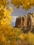 Yellow Leaves of Fall Frame a Rock Formation  Santa Fe  New Mexico  USA