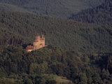 Castle Berwartstein Nestled in Thick Mountain Forest  Nature Park Pfaelzer Forest  Wasgau  Germany