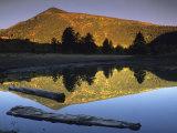 Sunlight on Francisco Peaks and Reflections  Lockett Meadow  Flagstaff  Arizona