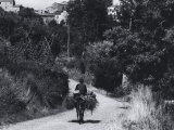 Man on Mule on a Country Road