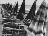 Beach Umbrellas and Lawn Chairs Closed on a Beach