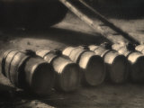 Row of Casks in a Cellar