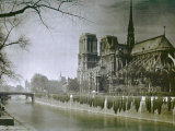 The Cathedral of Notre-Dame  Paris