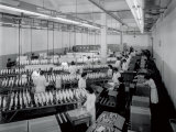 Interior of a Textile Factory  Numerous Workers in White Smocks are Packing Large Reels of Thread