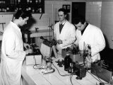 Technicians Working in a Chemical Laboratory at the Aldini Valeriani Institute