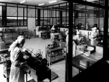 Technicians Working in a Pharmaceutical Laboratory in the Glaxo Factory