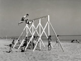 Group of Children Playing on a Swing on the Beach