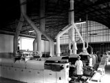 Workers at the Machinery of the Lazzaroni Di Saranno Cookie Factory