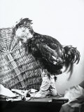 Child Dressed as a Cockerel