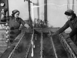 Two Female Workers at Work in the Giordani Company  Producer of Baby Carriages and Bicycles