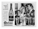 Billboard Advertising the Sparkling Wine Melini Ambassador  Produced in Pontassieve  Florence
