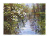 Spring Reflections I