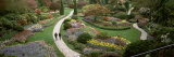 People Walking in Butchart Gardens  Brentwood Bay  Vancouver Island  British Columbia  Canada