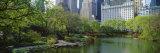 Pond in a Park  Central Park South  Central Park  Manhattan  New York City  New York State  USA