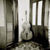 Double Bass Resting Against Wall Inside Palacio De Valle  Cienfuegos  Cuba