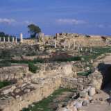 Roman Odeon Concert Venue and Hellenistic and Roman Gymnasium in Salamis  North Cyprus