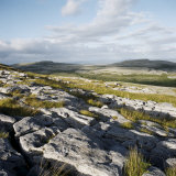 Burren  County Clare  Munster  Republic of Ireland  Europe