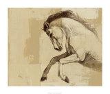 Majestic Horse II