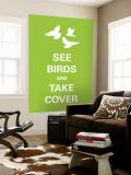 See Birds