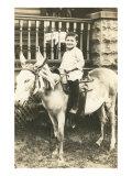 Boy Riding Mule