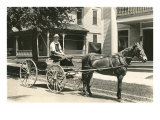 Horse-Drawn Cart on Elm Street