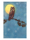 Owl with Full Moon