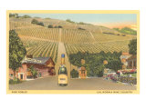 California Bottle of Champagne in Street  Paso Robles  California Wine Country