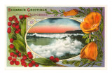 Season&#39;s Greetings  California Surf  Poppies