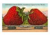 Mammoth Strawberry on Traincar  Oxnard  California