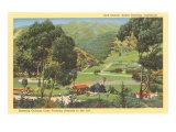 Golf Course  Santa Catalina