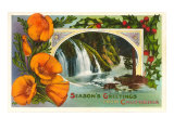 Poppies  Waterfall  Season&#39;s Greetings from California