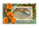 Season&#39;s Greetings from Ventura  California  Beach