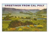 Greetings from Cal Poly  San Luis Obispo