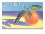 Single Orange with Blue Shadow  Calfornia