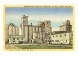 Grain Mills  Stuttgart  Arkansas