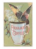 Butterfly Drinking Panama Coffee