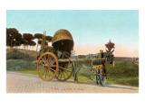 Wine Cart  Rome