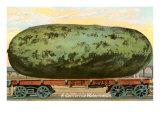 A California Watermelon  on Flatbed Train Car