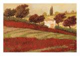 Apapaveri Toscana I