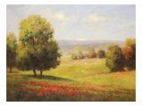 Red Meadow II