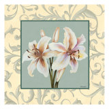 Lillies with Scroll