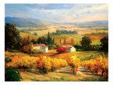 Hazy Tuscan Farm