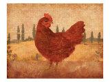 Tuscan Hen II